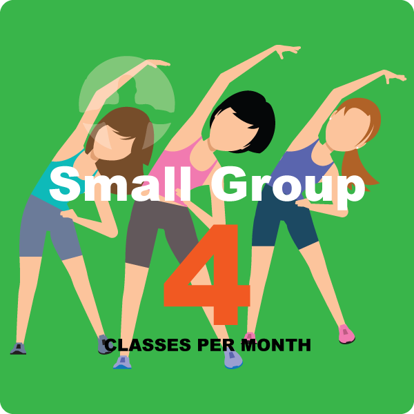 small group classes 4 per month